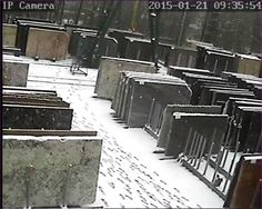 If you are planning a visit to @PisaniPLC in #Matlock, please wrap up warmly! There is a bit of #snow around the yard