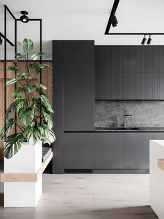decor ideas-luxe-interior design-home-decor-living What do you think? Are black and white kitchens the perfect decor or does this space need a pop of color? Kitchen Room Design, Modern Kitchen Design, Home Decor Kitchen, Interior Design Kitchen, Modern Interior, Interior Architecture, Interior Designing, Monochrome Interior, Interior Office