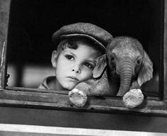 Robert Doisneau most famous photo Robert Doisneau, Cute Baby Animals, Animals And Pets, Wild Animals, Beautiful Creatures, Animals Beautiful, Cute Kids, Cute Babies, Baby Elefant