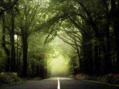 Brocéliande, la bretagne et ses lumières en photos     : de Philippe Manguin - Photographies de la forêt de Brocéliande  en Bretagne.