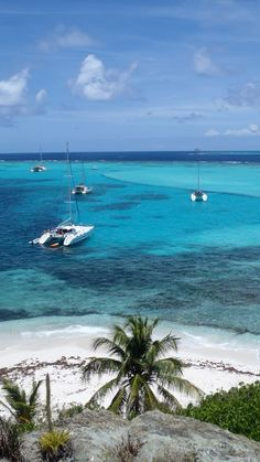 #Tobago - Tobago Cays - Caribbean---OH, I SO WANT TO BE THERE N-O-W! Need a vacation desparately!!!!!!!!