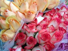 #Roses at #Louisville Costco - 16.99 for TWO dozen. Gorgeous! Special orders for events welcome, too!