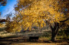 Fall at Fort Peck Lake, MT