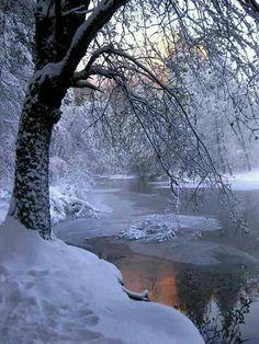 Winter creek side