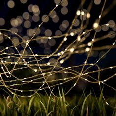 Outdoor Starry Solar String Lights- Solar Powered Warm White Fairy 100 LED Lights with 8 Lighting Modes for Patio, Backyard, Events by Pure Garden Image 1 of 7 Solar Led String Lights, Starry String Lights, Globe String Lights, Solar Powered Lights, String Lights Outdoor, Hanging Lights, Hanging Lanterns, Outdoor Fairy Lights, Outdoor Lighting