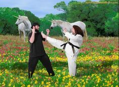 a great way to show off my new karate skills...in front of the unicorns in the backyard. Definitely do this.