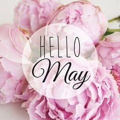 Hello, May! I hope you have a great new month! Enjoy the May flowers. Neuer Monat, Welcome May, Happy May, Happy September, Hello November, New Month, Spring Has Sprung, Months In A Year, Seasons Months