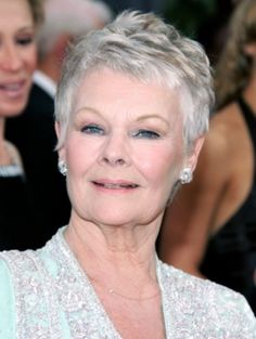 The Limited Short Hairstyle for Older Women with Fine Hair 2014 52 ...