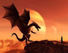 dragonii barbatiți pierd greutatea