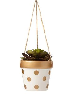 Ceramic 13.2cm x 11.5cm hanging planter with jute twine and fake plant included. <br> Never water that plant and watch it live on! <br/>