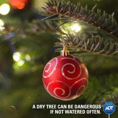 Just like plants, your #holiday tree should be watered everyday! Prevent the hazards that a dry tree could pose. #StaySafe #FirePrevention #HappyHolidays #ADT