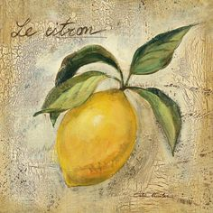 Decoupage,frutas e legumes Framed Wall Art, Framed Art Prints, Fine Art Prints, Poster Prints, Lemon Art, Posters Vintage, Vintage Prints, Kitchen Wall Art, Picture Wall