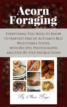 Acorn Foraging: Everything You Need to Know to Harvest One of Autumn's Best Wild Edible Foods, with Recipes, Photographs and Step-By-Step Instructions Vegan Snacks, Vegan Recipes, Free Recipes, Diet Books, Edible Food, Wild Edibles, Vegan Baking, Step By Step Instructions, Recipe Using