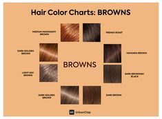 Hairstyles : The Only Hair Colour Chart For Indian Skin Tones brown color chart - Brown Things Brown Hair For Cool Skin Tones, Brown Hair Indian Skin, Types Of Brown Hair, Brown Hair Chart, Brown Hair Color Shades, Indian Skin Tone, Brown Hair Colors, Hair Colour, Pinkish Brown Hair