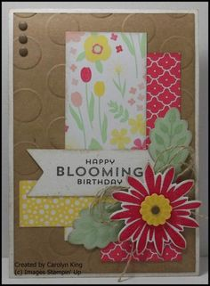 Carolyn King: King's on Paddington – All Abloom #1 - 7/26/14 (SU: All Abloom dsp; stamps/dies: Flower Patch; Large Polka Dot EF)