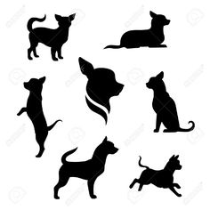 43730614-Chihuahua-small-dog-vector-icons-and-silhouettes-Set-of-illustrations-in-different-poses--Stock-Vector.jpg (1300×1300)