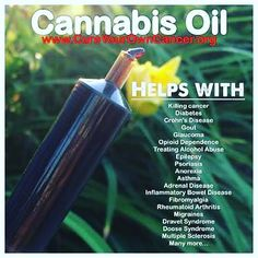 """I can't believe that this herbal medicine is illegal. Isn't it strange that they are a happy to dose is up on pharmaceutical medication but a natural herb """"no chance!!"""". Combining cannabis oil with a plant based organic diet regular detoxing a happy positive attitude and exercise will fast track the healing of many diseases!! Take control of your health today! #cannabis #medicalcannabis #marijuana #medicalmarijuana #cannabisoil #cannabisoilcurescancer #cannabisoil #healyourself #healyourbody…"""