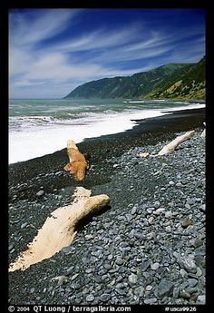 Black Sand Beach - Just north of the town of Shelter Cove in Humboldt County, CA. Fun Places For Kids, Places To See, Beach Walk, Sand Beach, California Dreamin', Northern California, Black Sand, Future Travel, Travel Posters