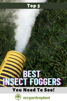 Pesky insects are the creatures that most gardeners dread for! So today, we have readily made available for you the top 5 best insect foggers for growing marijuana indoors you need to see! These products are tested and proven! Marijuana Plants, Gardening Tools, Gardening For Beginners, Organic Gardening, Easy Garden, Indoor Garden, Garden Ideas
