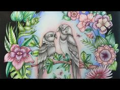 MAGICAL JUNGLE by Johanna Basford - faber castell polychromos - part 2 - YouTube