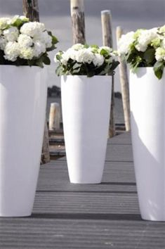 Find the amazing tall white cylinder planters from the link above! is part of Flower pot garden - Container Plants, Container Gardening, Outdoor Plants, Outdoor Gardens, White Gardens, Garden Planters, Backyard Landscaping, Garden Inspiration, Beautiful Gardens