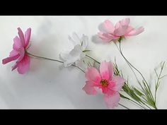 DYI - How to make paper flower - Cosmos - by crepe paper - Hoa cánh chuồ...
