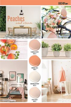 Colorfully BEHR articles that feature inspirational content and themes. Scheme Color, Peach Color Schemes, Peach Color Palettes, Kitchen Color Palettes, Room Color Schemes, Peach Living Rooms, Peach Rooms, Peach Walls, Dorm Room Colors
