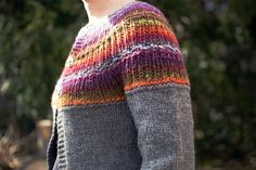 shalom with noro yoke and sleeves.