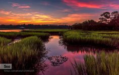 Waking in the pink by Farnsworth #nature