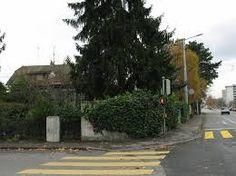 """Résultat de recherche d'images pour """"chemin du gué petit-lancy"""" Angles, Images, Sidewalk, Plants, Search, Side Walkway, Walkway, Plant"""