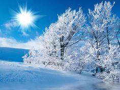 hiver | Entretien piscine : L'hiver… Le temps des 10 bonnes résolutions ...
