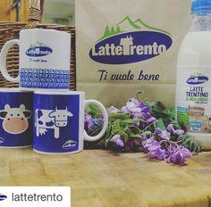 #Repost @lattetrento  Dalla prossima settimana nei negozi #latteTrento  con un acquisto di euro 3500 in regalo la tazza di LatteTrento.. 5 modelli da collezione per una colazione di gusto!  Ecco l'elenco dei negozi: http://ift.tt/1SKvvJB  #lattetrento #tivuolebene #qualitàtrentino #gustotrentino #trentinowow #trentino