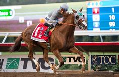 Before there was Pharoah, there was Chrome.  California Chrome and Victor Espinoza roll to a 5 length victory in the Pacific Classic 2016.