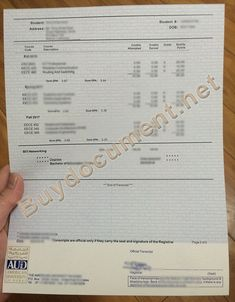 american university in dubai diploma, american university in dubai transcript, AUD diploma, AUD degree Routing And Switching, Higher Learning, Aud, Certificate, High School, Image Link, College, Student, University