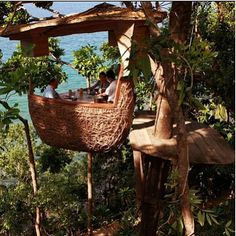 This is actually in Thailand - a resort - and the 'pods' are actually part of the restaurant .Yuka Yoneda Lofty Tree Pod Dining at the Soneva Kiri Resort Thailand Bali Lombok, Cool Tree Houses, Cob Houses, Tree Tops, In The Tree, Thailand Travel, Thailand Adventure, Bangkok Thailand, Oh The Places You'll Go