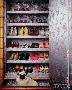 This photo! Pugs are so stylish -Dudley, a pug belonging to Los Angeles–based decorator Natasha Esch, occupies a drawer in the Chinese-silk-lined Victorian armoire Esch uses as a shoe closet. Closet Doors, Shoe Closet, Closet Wall, Master Closet, Closet Space, Ideas Armario, Armoire, Dressing Room Closet, Dressing Rooms