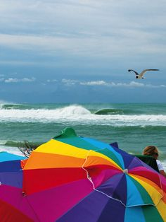 Outer Banks, North Carolina. Photo: Matt Lusk