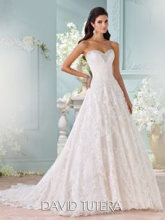 David Tutera for Mon Cheri - 116211 – Clytie - Alencon lace wedding dress, strapless hand-beaded lace appliqués and tulle over satin A-line gown, hand-beaded sweetheart neckline, slightly curved back with covered buttons trailing down to scalloped hem and chapel length train Ivory/Gardenia