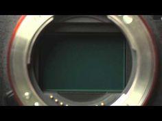 Lo stabilizzatore della Sony A7 II in azione   MakingPhoto.com