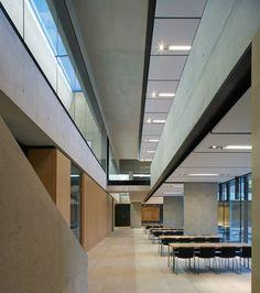 Gallery - Sainsbury Laboratory / Stanton Williams - 10