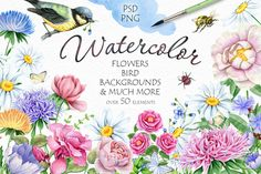 Watercolor Flowers and Bird by Eva-Katerina on @creativemarket