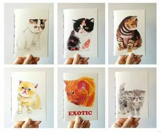 A Set of 6 Mini Journals / Exotic Shorthair / Persian Cat /Travel Journal /Pocket Journal /Writing Journal /Cat Illustration /Cat Painting