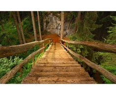 20 Sweet Pictures of Staircases Places To Travel, Places To See, Wonderful Places, Beautiful Places, Black Forest Germany, Plitvice Lakes National Park, Wanderlust, Stairway To Heaven, Germany Travel