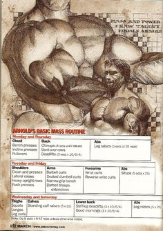 Arnold Schwarzenegger | 003 - Arnold's Basic Mass Routine
