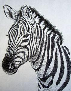 Zebra Stippling by Ashley Odell on ARTwanted Zebra Drawing, Zebra Painting, Zebra Art, Dotted Drawings, Pencil Art Drawings, Art Drawings Sketches, Animal Sketches, Animal Drawings, Stippling Drawing