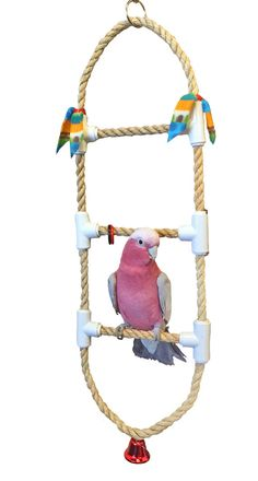 Stepping Up rope ladder medium bird toy by BuddyBirdToys on Etsy