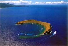 """Molokini Island, Maui.  Diving with Humpback Whales in April; you can hear them """"singing"""" underwater."""