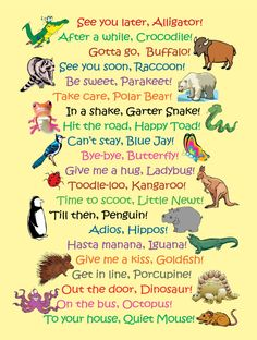 Whimsical poster perfect for a childs room or a classroom. Check out all the see ya later sayings (see photo). Dimensions: 18 x 24 Professionally printed on heavy, fuji poster paper with eco-friendly ink that is 90% waterbased. UV protected. Very colorful.  Shipped in a tube, packed to protect the edges.  Toodle-loo Kangaroo!  This item is marked to ship within the United States. If you are interested in purchasing it and having it shipped outside of the US please contact me and we can…