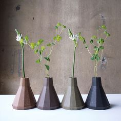 Rebirth biodegradable #planters: use indoors or plant in soil, they degrade leaving only plant. #gardening