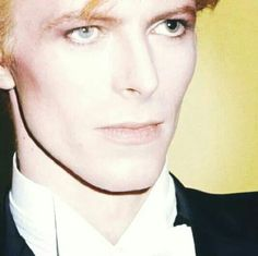 David Bowie's refined features